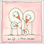 New life, a true wonder...