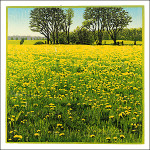 Over Elyzeese velden, ode aan de paardebloem