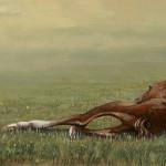 Femke, de eerste levensminuten van een veulen 1